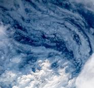 اعصار فلورنس