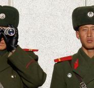 كوريا الشمالية والارانب