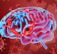 فيروس كورونا والدماغ