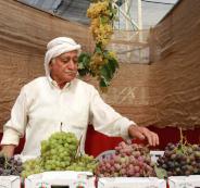 مهرجان العنب في حلحول