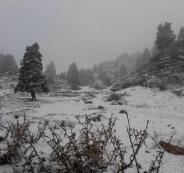 الثلوج تغطي جبال لبنان لأول مرة هذا الموسم والحرارة تلامس الصفر