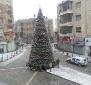فصل الربيع في فلسطين