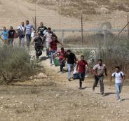 اعداد العمال الذين يعملون في اسرائيل