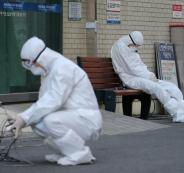 العلماء وفيروس كورونا