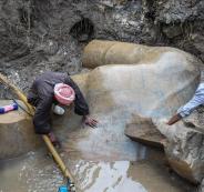 اكتشاف رأس وصدر تمثال ضخم لـ