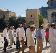 المستوطنون يقتحمون الأقصى بغطاء من الاحتلال