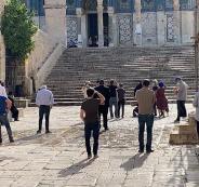 المستوطنون يقتحمون المسجد الاقصىة