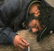 2.8 مليون إيراني يستهلكون المخدرات بانتظام وعددهم يتضاعف