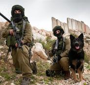 لواء جفعاتي في الضفة الغربية