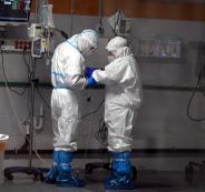 فيروس كورونا في مفاعل ديمونا