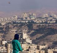 نيويروك تايمز وفلسطين
