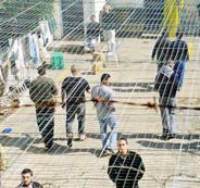 الاسرى الفلسطينين
