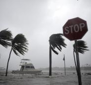 الامارات تتبرع لمتضرري اعصار ايرما
