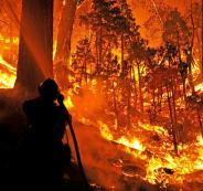 الدفاع المدني يسيطر على حريق اشجار هائل في جبال بيت دقو شمال غرب القدس