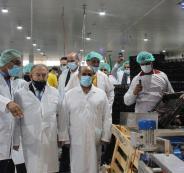 مصنع حصاد فلسطين للتمور