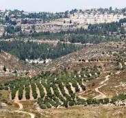 الاستيطان الاسرائيلي والضفة الغربية
