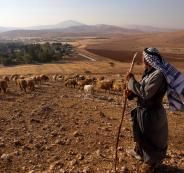طرد فلسطينيين من الاغوار