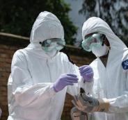 فيروس سيقضى  على نصف العالم