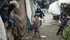 نسبة الفقر في غزة