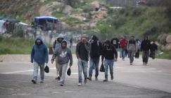 خسائر العمال الفلسطينين بسبب كورونا