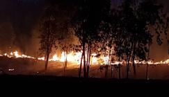 21 حريقاً داخل المستوطنات بفعل الطائرات الورقية الحارقة وفشل إطفاء ثلاثة منها