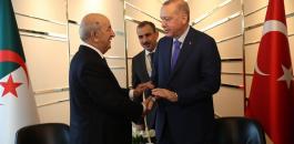 الرئيس التركي اردوغان والجزائر