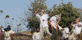 تحطيم مركبات فلسطينين