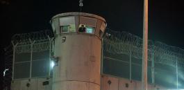 سجن جلبوع