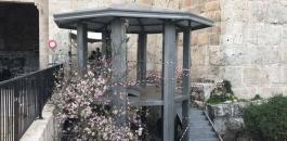 نصب برج مراقبة في باب العامود بالقدس