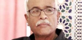 د  محمد ابو غالي