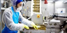 المصانع في فلسطين