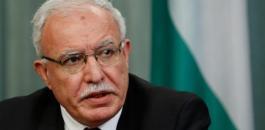 وزير الخارجية رياض المالكي
