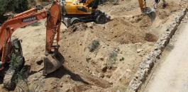 اقتلاع اشجار الزيتون في بيت جالا