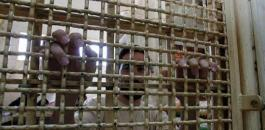 معتقلين فلسطينيين في سجون اسرائيل