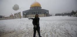 الثلوج في فلسطين