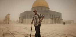 فلسطين والارصاد