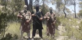 هجمات لداعش في موزمبيق