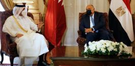 وزير الخارجية المصري في الدوحة