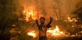 حرائق الغابات في اليونان