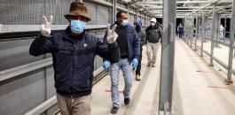 تصاريح العمال الفلسطينيين في اسرائيل