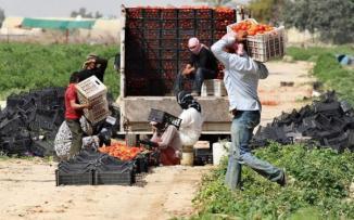 ابناء قطاع غزة في الاردن