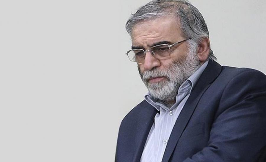 العالم النووي الايراني