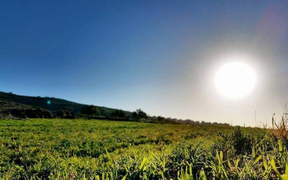 حالة الطقس: ارتفاع طفيف على درجات الحرارة - موقع رام الله الإخباري