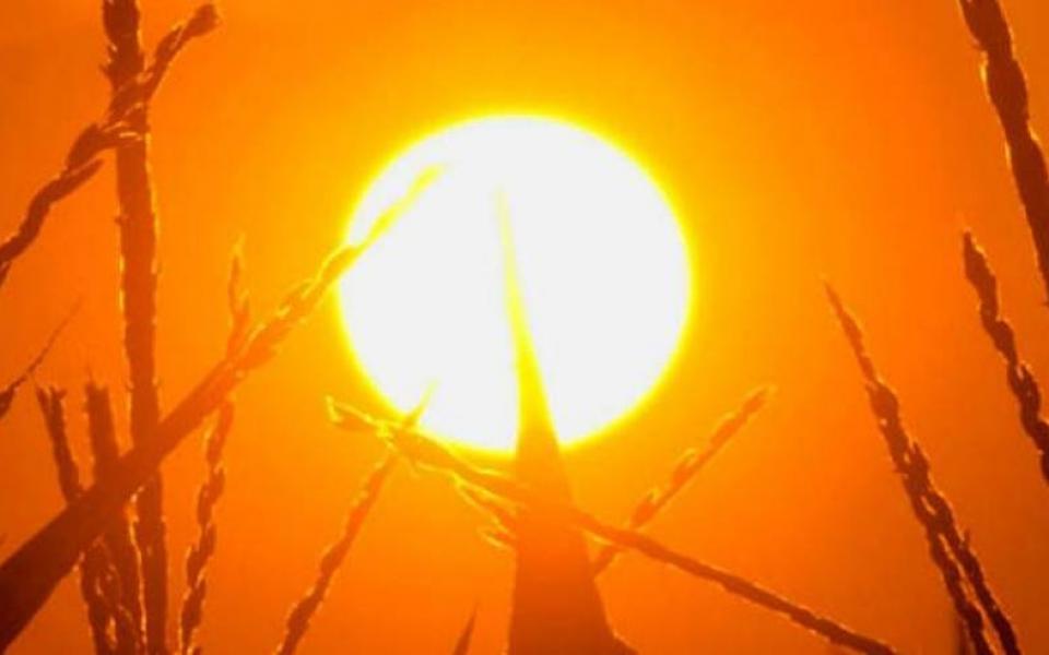 درجات الحرارة الشهر الحالي هي الأعلى منذ 17 عاما - موقع رام الله الإخباري