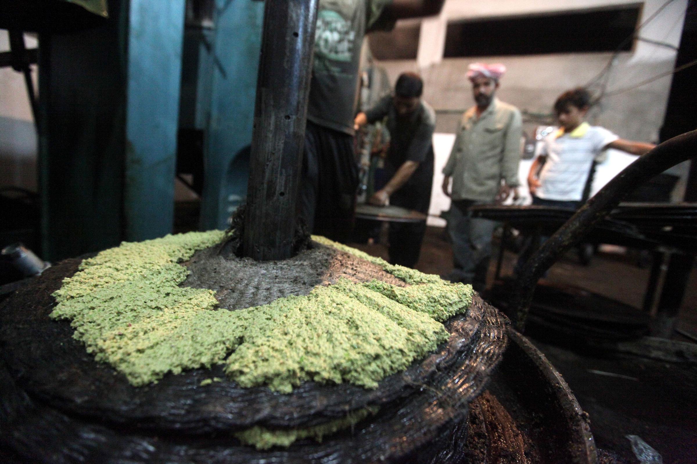أسعار زيت الزيتون في فلسطين
